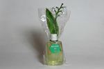 miniature Muguet de Lesourd